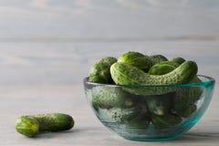 Pepinos verdes frescos em uma bacia de vidro fotos de stock