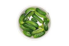 Pepinos verdes frescos en un cuenco de agua - objeto aislado Fotos de archivo libres de regalías