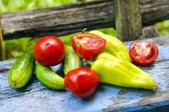 Pepinos y pimientas de los tomates Fotos de archivo