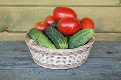 Pepinos y tomates frescos en una cesta Imágenes de archivo libres de regalías