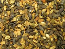 Pepita seeds Stock Photography