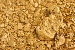 Pepitas de oro naturales del placer Foto de archivo libre de regalías