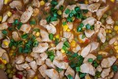 Pepite del curry del pollo su una padella fotografia stock libera da diritti