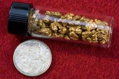 Pepite di oro del giacimento detritico dell'Idaho fotografia stock