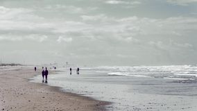 Peple som går på havskusten arkivfoto