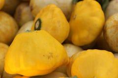 Pepo de Cucurbita, courge jaune de starburst, pattypan jaune Photographie stock libre de droits