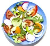 Pepp das cebolas do aipo das cenouras do ofoschey do rabanete do pepino do tomate da salada Foto de Stock