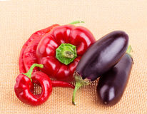Peppar aubergine, varma peppar Arkivfoto