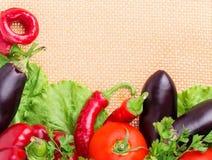 Peppar aubergine, varma peppar Royaltyfria Bilder