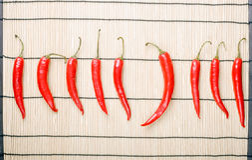 peppar för chili nio Arkivfoto