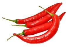 Peppar för röd chili Royaltyfri Bild