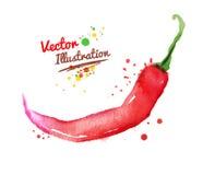 Peppar för röd chili för vattenfärg stock illustrationer