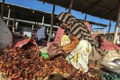Peppar för röd chili på en marknad i Etiopien Royaltyfria Bilder