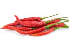 Peppar för röd chili på vit Royaltyfria Bilder