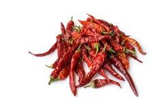 Peppar för röd chili som isoleras på en vit bakgrund Royaltyfri Fotografi