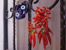 Peppar för röd chili som torkar vid fönstret med blåttberlockskor Arkivfoto