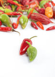 Peppar för varm chili Fotografering för Bildbyråer