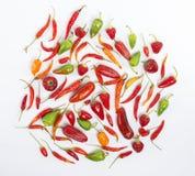 Peppar för varm chili Arkivbild