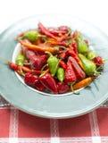 Peppar för varm chili Royaltyfria Bilder