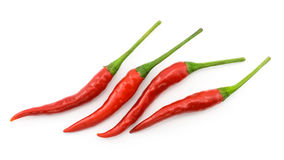 Peppar för varm chili eller liten chilipadi, line up som isoleras på vit Royaltyfri Bild
