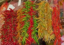 Peppar för varm chili på marknaden Arkivbilder