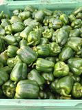 Peppar gör grön paprika arkivfoto