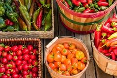 Peppar i olika korgar Arkivfoto