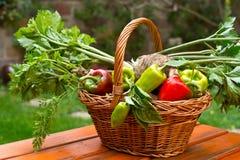 Peppar med rotar grönsaker Arkivfoto