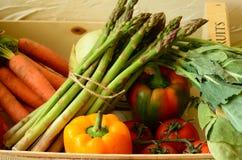 Peppar, morötter, sparris, tomater och kohlrabies i ask Arkivbild