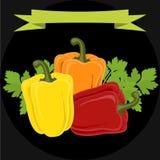 Peppar och persilja på svart bakgrund royaltyfri illustrationer