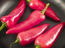 peppar pan2 Fotografering för Bildbyråer