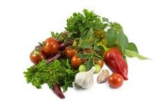 Peppar tomater, vitlök, parsley Royaltyfri Foto