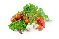 Peppar tomater, vitlök, parsley Fotografering för Bildbyråer
