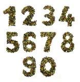 Pepparalfabetet och numrerar Fotografering för Bildbyråer