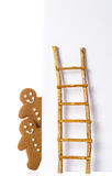 Pepparkaka med stegen Royaltyfria Bilder