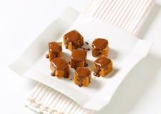 Pepparkakafyrkanter med smältt choklad Royaltyfri Bild