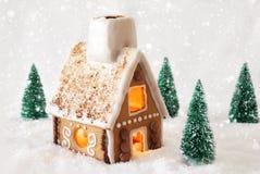 Pepparkakahus på snö med snöflingor och vit bakgrund Royaltyfria Bilder