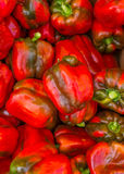 Peppars for sale at a Farmer's Market. Banff Alberta Royalty Free Stock Photo