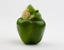 Pepper. Grains pepper and internal structure Stock Photography