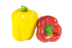 Pepper. Yellow and red sweet pepper with white background Royalty Free Stock Photography