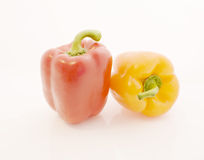 Pepper. On a white background Stock Photography