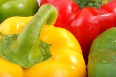 Pepper Stock Image