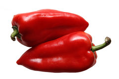 Pepper. Two peppers on a white background Stock Images