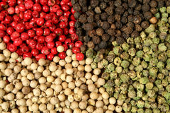 Pepper. Four sorts of pepper: white, green, red and black Royalty Free Stock Photography