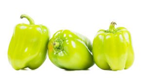 Pepper Stock Photography