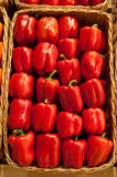Pepper. Ripe pepper in a wattled basket Royalty Free Stock Photos