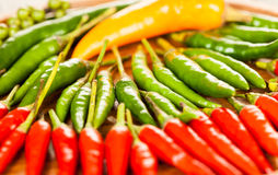 Pepper. Stock Image