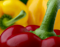 Pepper. Red pepper on a background yellow peppers Stock Image
