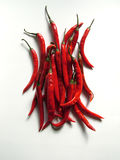 Pepper. Red Pepper Royalty Free Stock Images