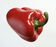 Pepper. Agriculture, bell, bellpepper, capsicum, chilli, closeup, cookery, cuisine, detail Royalty Free Stock Image